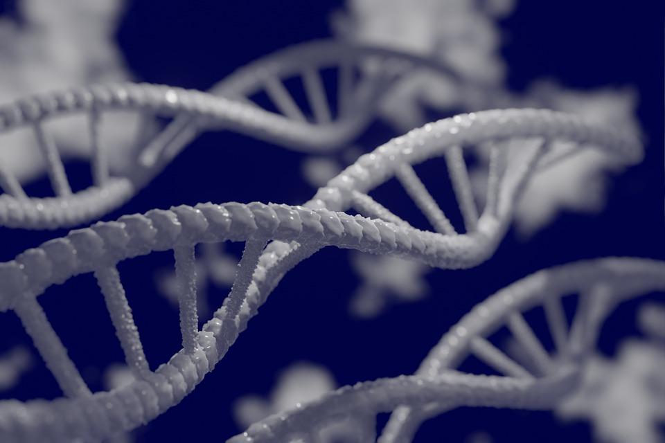 Секреты генетики: об этом вы точно не догадывались!